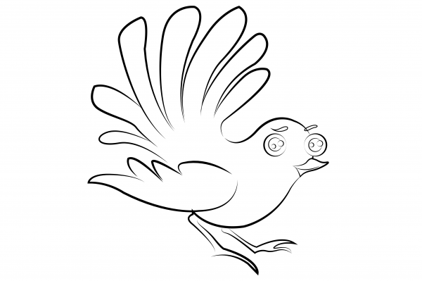 Fantail Colouring Page
